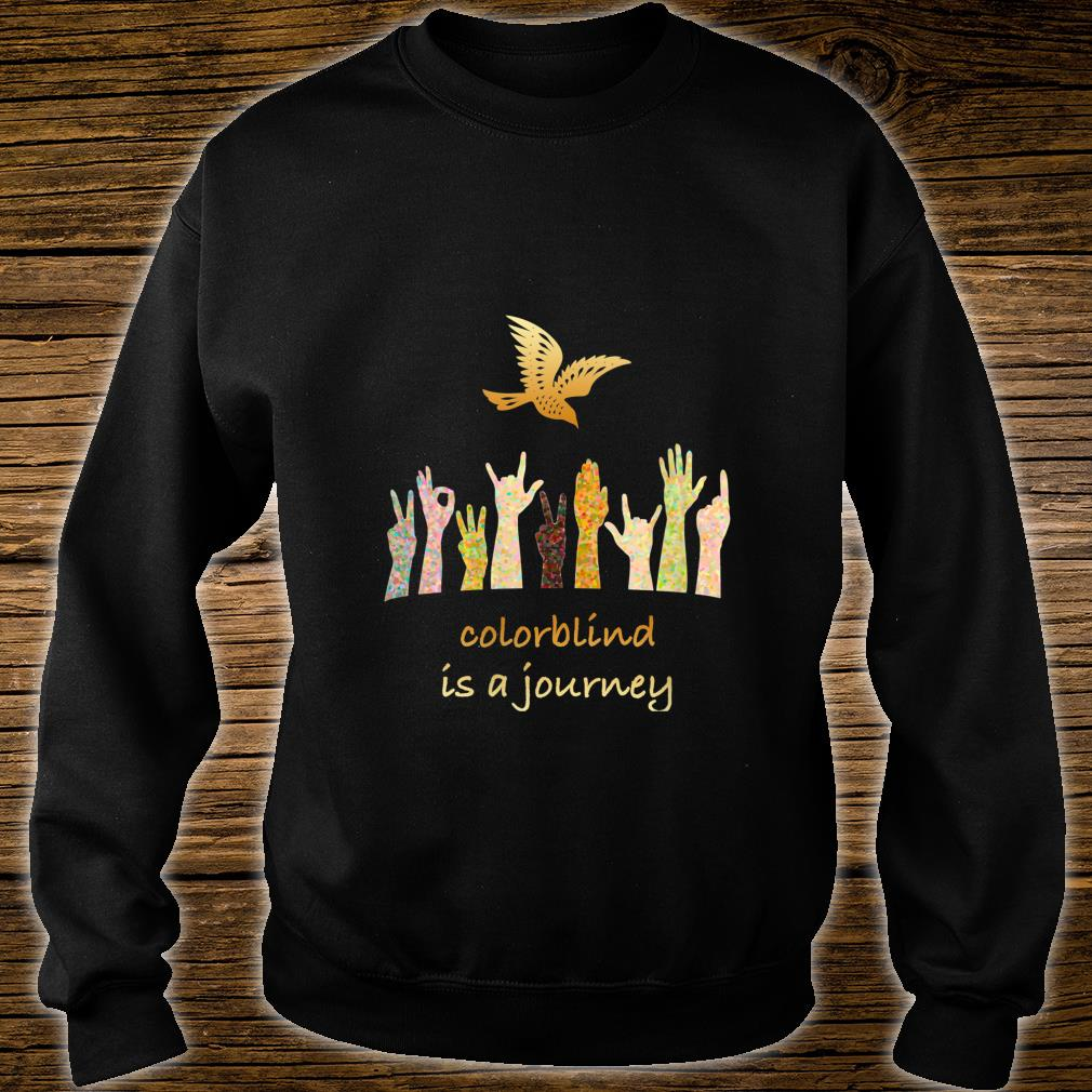 Colorblind is a Journey Shirt sweater
